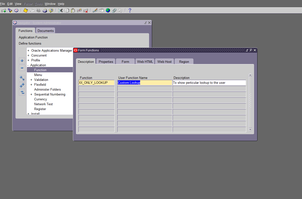 How to show specific Lookup type under responsibility | oracle e